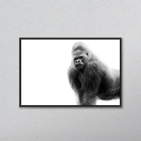 Black And White Portrait Of A Gorilla