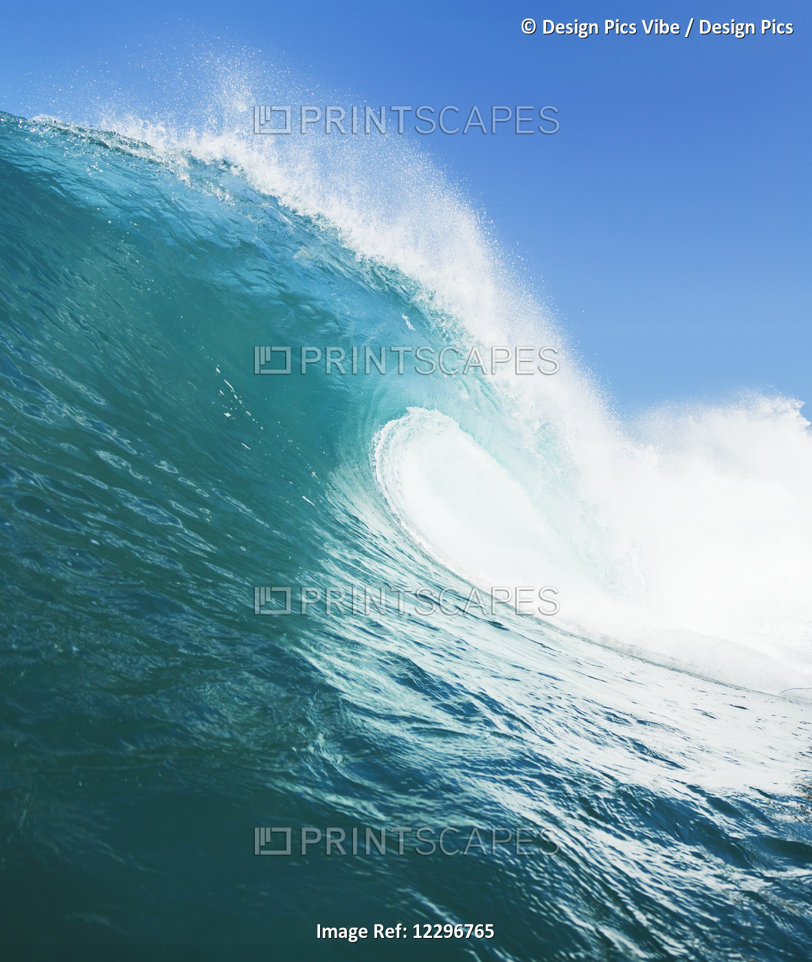 Tropical Blue Ocean Wave